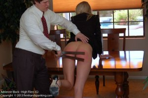 Firm Hand Spanking - High Fliers - G - image 4