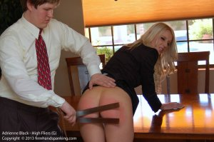 Firm Hand Spanking - High Fliers - G - image 11