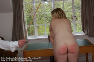 Firm Hand Spanking - The Institute - M - image 4