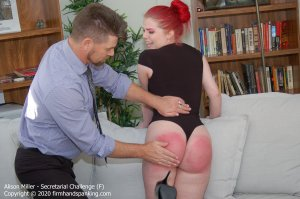 Firm Hand Spanking - Secretarial Challenge - F - image 6