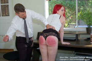 Firm Hand Spanking - Secretarial Challenge - A - image 4