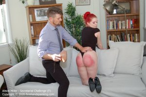 Firm Hand Spanking - Secretarial Challenge - F - image 7
