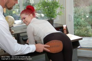 Firm Hand Spanking - Secretarial Challenge - B - image 1