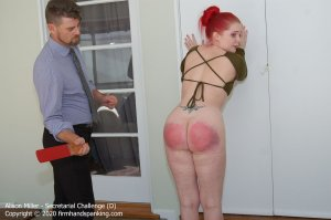 Firm Hand Spanking - Secretarial Challenge - D - image 9