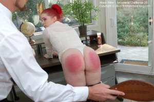 Firm Hand Spanking - Secretarial Challenge - B - image 4