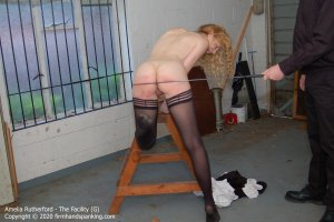 Firm Hand Spanking - The Facility - G - image 5