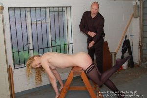 Firm Hand Spanking - The Facility - F - image 8