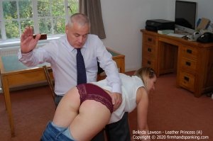Firm Hand Spanking - Leather Princess - A - image 6